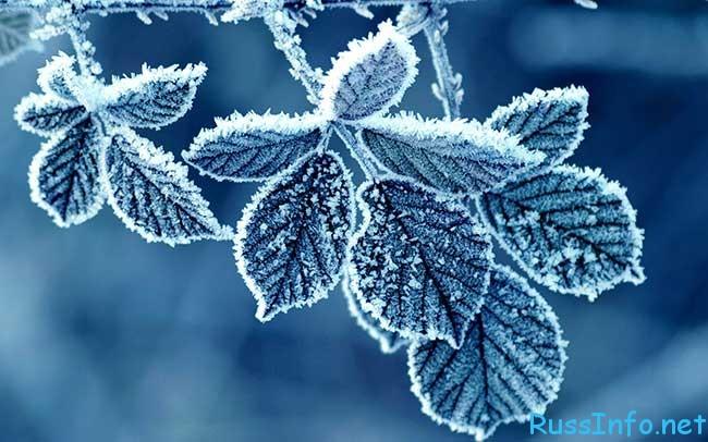 точный прогноз 2018 когда придет зима в Россию