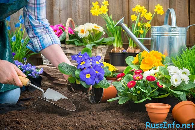 посевной календарь для Украины на 2018 год распечатать