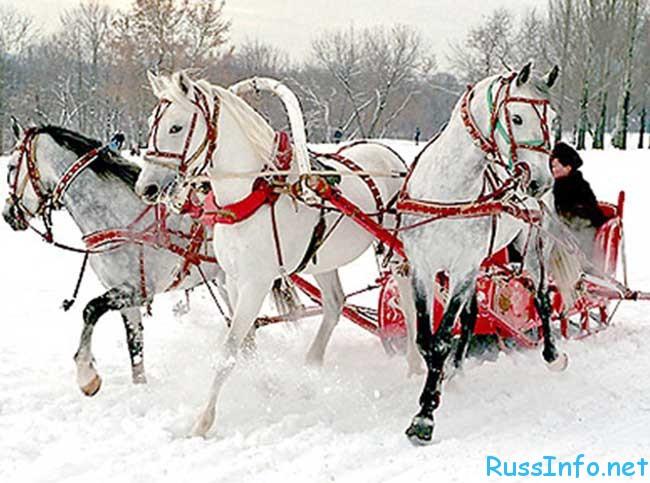 где можно встретить Новый год 2019 в России