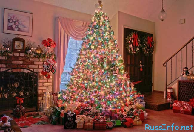 правильно выбрать новогоднюю ёлку на Новый год 2019