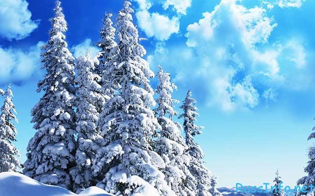 какая будет зима 2017-2018 в Краснодаре
