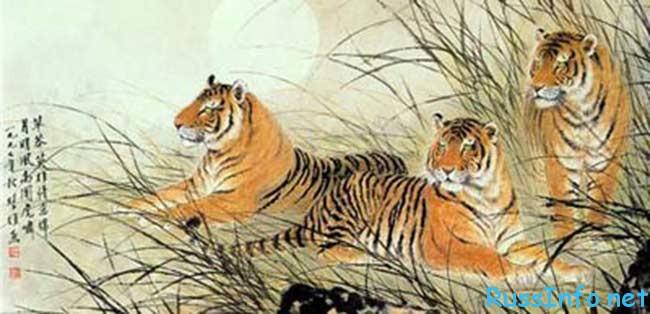 Зодиакальный гороскоп тигр