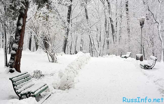 какая будет зима 2017-2018 в Санкт-Петербурге
