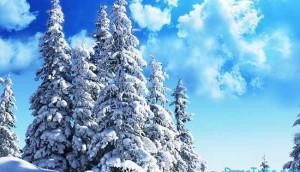 какая будет погода в феврале 2018 года в России