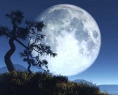 лунный календарь на 2020 года фазы луны скачать