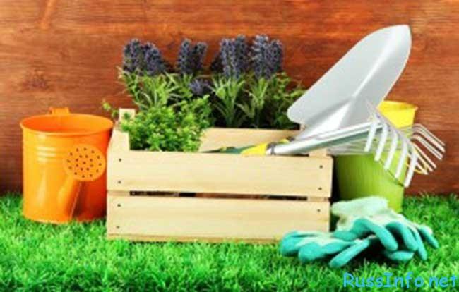 лунный посевной календарь садовода-огородника на февраль 2018 года