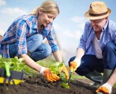 посевной лунный календарь огородника и садовода на март