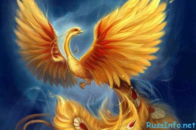 славянский гороскоп на 2020 год по году рождения