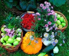 посевной лунный календарь огородника и садовода на апрель