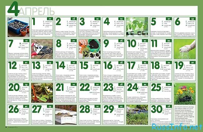 лунный посевной календарь садовода-огородника на апрель 2018 года