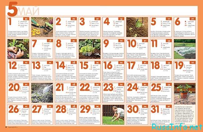 посевной календарь на май 2018 года