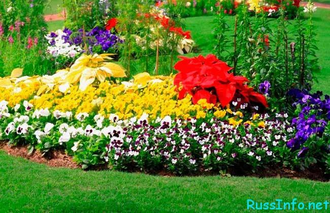 лунный посевной календарь садовода-огородника на май 2018 года