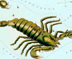 финансовый гороскоп на июнь 2017 Скорпиона