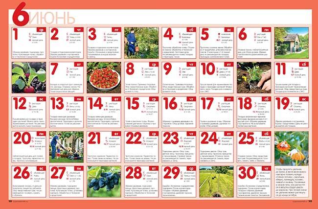 посевной календарь на июнь 2016 года