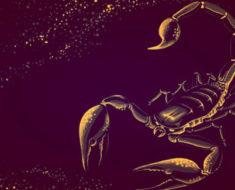 финансовый гороскоп на 2020 Скорпиона