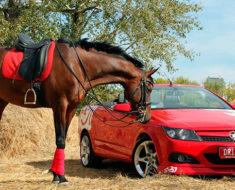 налоги на авто по лошадиным силам в 2017 году