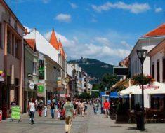 плотность населения Словакии на 2017 год составляет