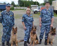 повышение зарплаты ФСИН в 2017 году в России