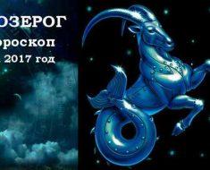 Козерог, гороскоп 2017 год