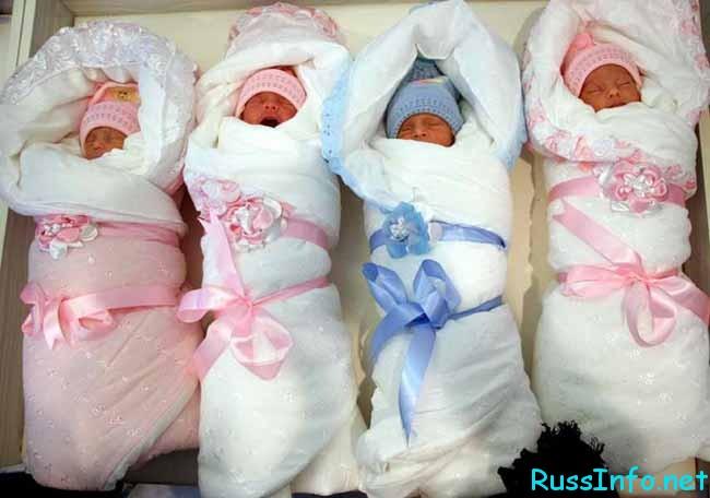 рожденные в ноябре 2018 года детки по характеру