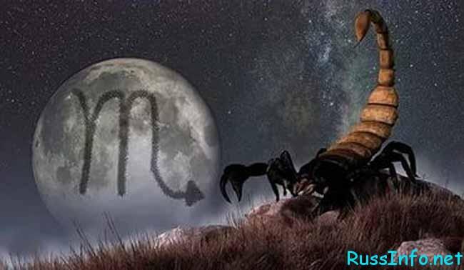 любовный гороскоп для Скорпиона на ноябрь 2018 года