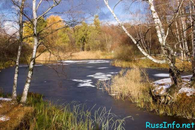 какой будет погода в Москве в ноябре 2018 года
