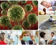 прививка от гриппа в 2017 году