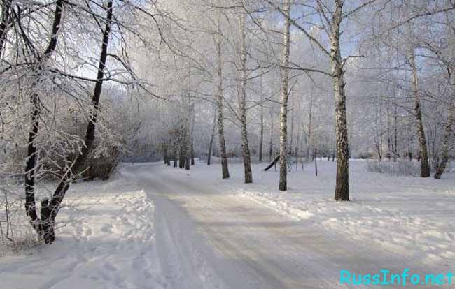 какая будет зима 2018-2019 в Краснодаре по прогнозам синоптиков