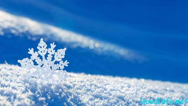 прогноз какой будет зима 2018-2019 в Волгограде
