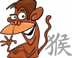 восточный (китайский) гороскоп для Обезьяны