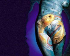 красивенные рыбы
