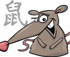 китайский гороскоп на 2017 год для Крысы на август