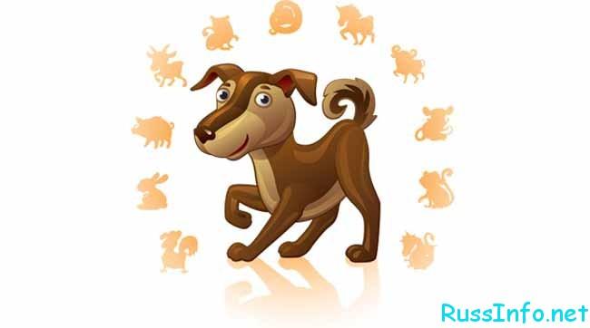 восточный гороскоп на январь 2019 года Собаки