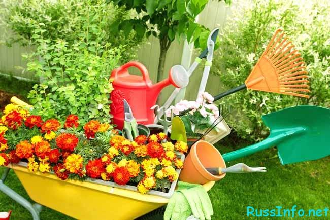 садовые инструменты летом