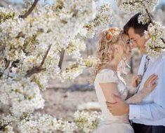 майское цветение и всадьба