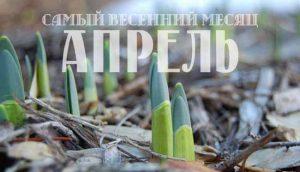 месяц апрель