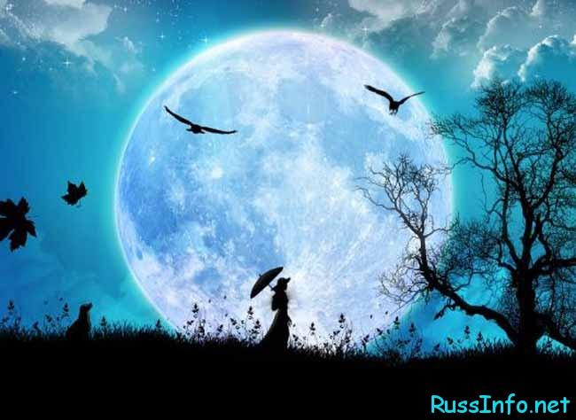 одинокая девушка под луной