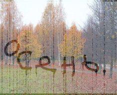 это осень