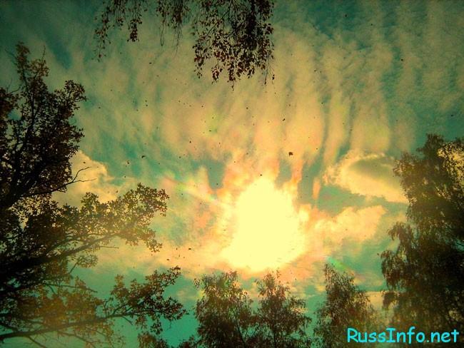 даты проявления магнитной бури