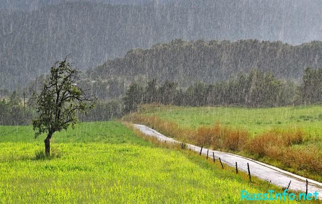 дождь в августе