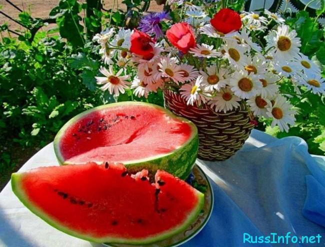 Август - это щедрая пора летнего сезона