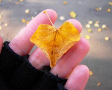 листик в руке