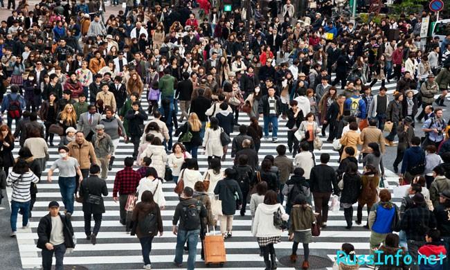 Японцы идут...