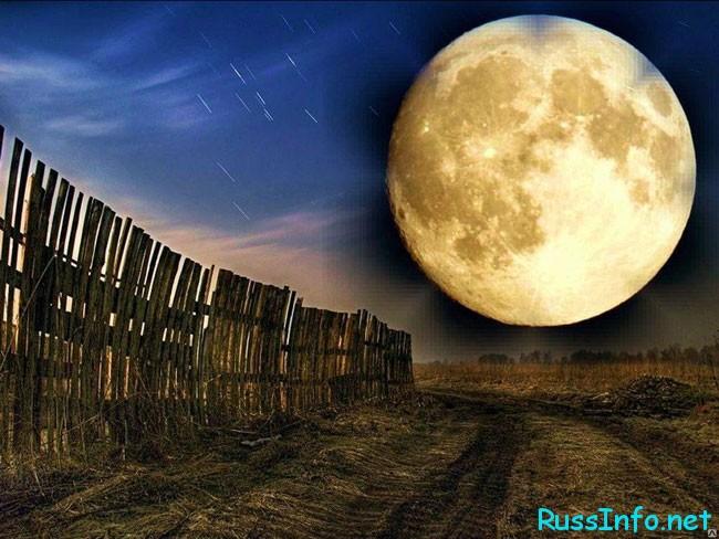 луна и огород