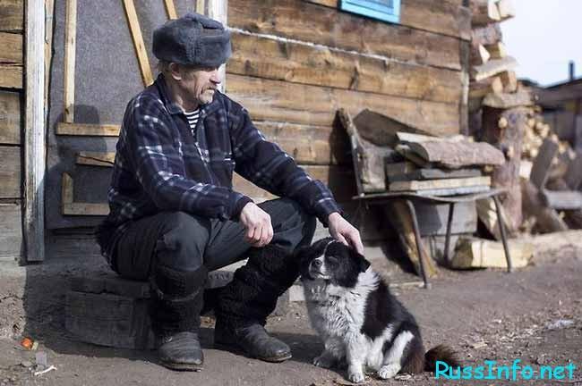 дед и собачка