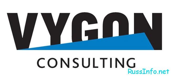 представители компании Vygon Consulting