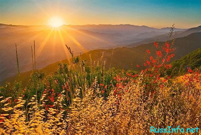 Солнце всегда дарит радость