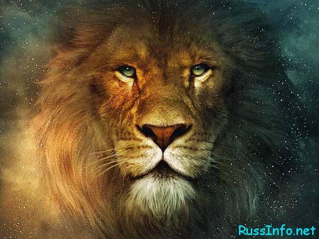 Астрологический прогноз на январь 2018 года для Льва