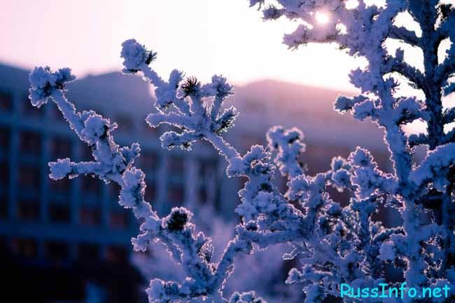 Зима 2017-2018 в Казахстане