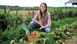 Летние месяцы больше подходят для высаживания цветов и сбора урожая